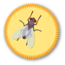 Fly on the Wall Badge by Merit Badger